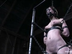 Banging, BDSM, Cage, Wall Mounted, Fetish, Finnish, girls Fucking, Hardcore Fuck Hd, hard Core, Party, Perfect Body Amateur Sex, vagin, Squirt, Knockers Fuck, toying, Riding Dildo, Watching Wife, Wet, Very Wet Pussy Orgasm